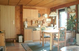 FeWo EG - Küchenbereich